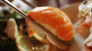 salmon-sushi-neta
