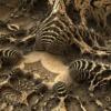 fractal-fossil